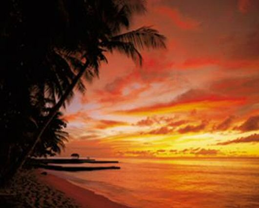 Tobago Sunset Wall Mural
