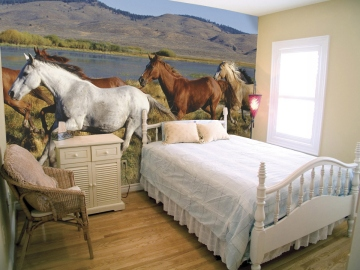 Wild Horses Wall Mural roomsetting