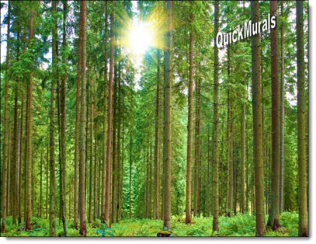 Morning Forest Peel & Stick Self Adhesive Canvas Wall Mural