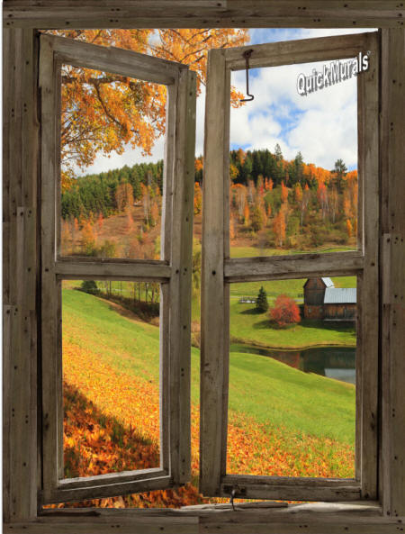 Vermont Cabin Window Wall Mural