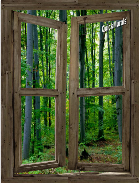 Woodland Cabin Window Wall Mural