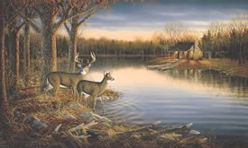 Tranquil Evening Mural