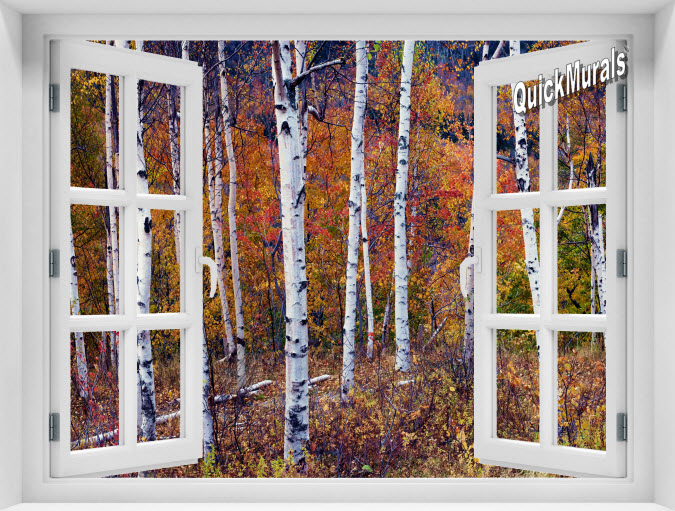 Autumn Birch Forest Instant Window Mural
