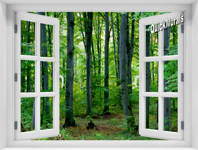 Woodland Forest Instant Window Mural
